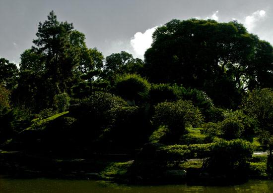 jardin_japones_05